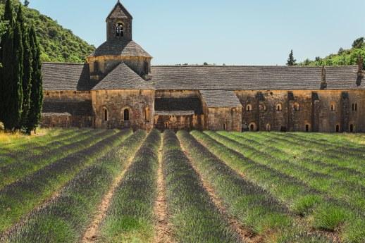 Abbaye de Senanque, Gordes
