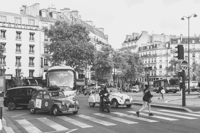 Luxemberg Gardens_Paris-0003