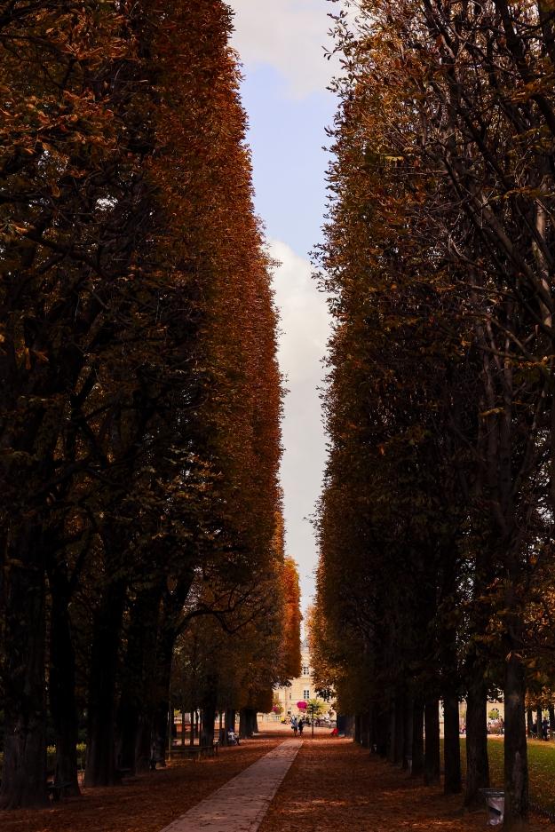 Luxemberg Gardens_Paris-0005