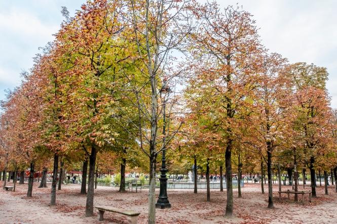 Luxemberg Gardens_Paris-0017